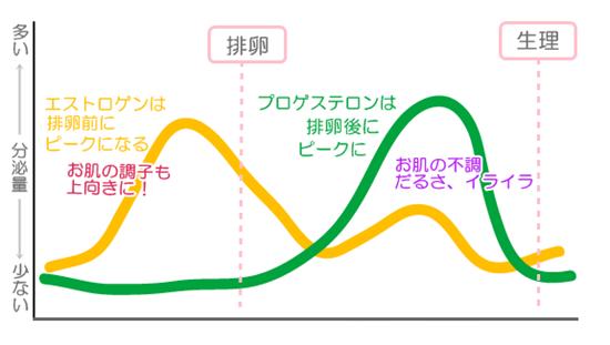 ホルモンバランスイメージ図