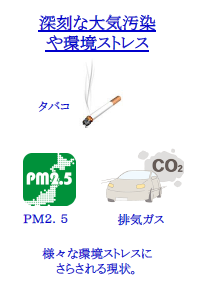 環境ストレス