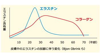 エラスチン減少グラフ